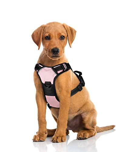 Dog Harness 28-45 Pound, No-Pull with 2 Leash Clips,Adjustable Soft Padded Dog Vest,Reflective No-Choke Pet Oxford Vest with Easy Control Handle (L, Pink)
