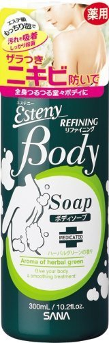 Esteny Medicated Body Soap (Back Acnes) 300ml (Harajuku Culture Pack)