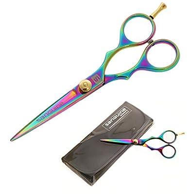 Professional Hair Scissors Hairdressing Scissors, Titanium Sheen - 5.5 inch (14 cm) by Sanguine Scissors Ltd