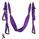 N/D Yoga Hamaca Gimnasio Fuerza de inversión antigravedad tracción aérea Yoga Swing Cinturón, Aéreo Yoga Swing Set, antigravedad Que cuelga del Techo de Yoga Honda,Púrpura