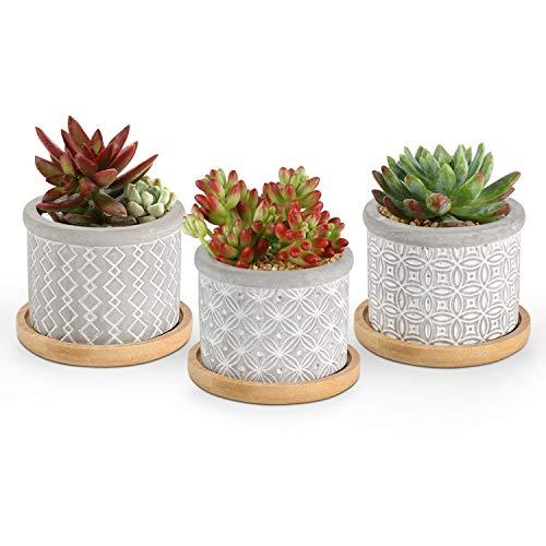 T4U 6CM Macetas para Cactus de Cemento con Plato de Bambú Paquete de 3, Mini Maceteros Pequeños para Suculento Plantas Casa y Jardin Boda Decorativos Interior