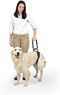 PetSafe Solvit CareLift Lifting Aid Harness for Dogs - Rear Only - Small, Medium, Large