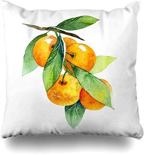 Mesllings gooien kussenslopen groene mandarijn aquarel fruit mandarijn tak voedsel sap drinken natuur oranje citrus verf dieet huisdecoratie kussensloop kussensloop 45x45cm