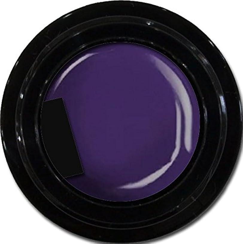 自治足首こどもの宮殿カラージェル enchant color gel M511 LavenderNights 3g/ マットカラージェル M511 ラベンダーナイツ 3グラム