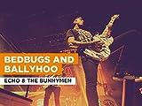 Bedbugs And Ballyhoo al estilo de Echo & The Bunnymen