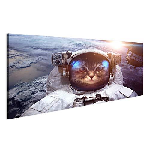 Cuadro gato astronauta