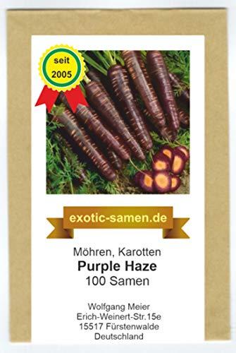 Karotte - Möhre - Purple Haze Hybrid - 100 Samen