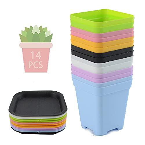 Piattino Mini Vasi Da Plastica,Vasetti per Piantine Colorati,Vasi da Fiori in Plastica con Pallet,Vaso da Fiori In Plastica Quadrato,Colorati Vasi In Plastica per Fiori (14PCS)