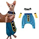 YUYUYU Mascota Perro Gato Ropa Dragon Ball Beerus Cosplay Disfraz para Sphynx Gato Sin Pelo Cintura 12-16in