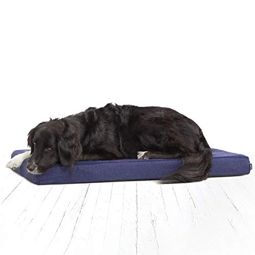 BarkBox Memory Foam Dog Bed Review