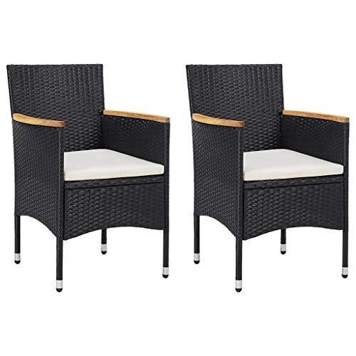VidaXL 2X tuinstoel eetstoel stoel stoel rotan stoel tuinstoel rotan stoel tuinmeubelen rotan stoelen poly rotan zwart