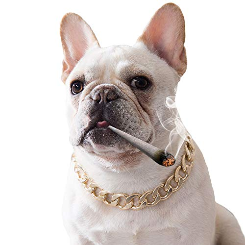 "MuYaoPet Cuban Curb Gold Dog Choke Chain for French Bulldog Medium Large Dog Necklace Pitbull Pug Collar (15mm Wide 14.5"" Length) (Length: 14.5"" Wide: 15mm, Gold)"