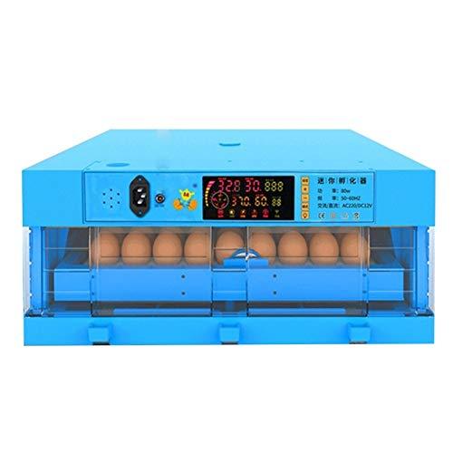 Jlxl Completamente Automática Digital 64 Huevos Incubadoras Control De Temperatura Y Humedad para Pollos Patos Ganso Aves De Corral Paloma