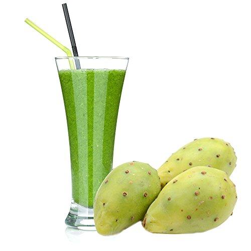 Kaktus Molkepulver Luxofit mit L-Carnitin Protein angereichert Wellnessdrink Aspartamfrei Molke (333 g)