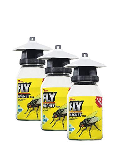 Victor M380 Fly Magnet 1Quart Reusable Trap With Bait 3 Pack