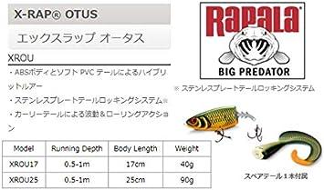 Se/ñuelo con anzuelos 2 n/º 2//0, 0,5-1 m Rapala X-Rap Otus