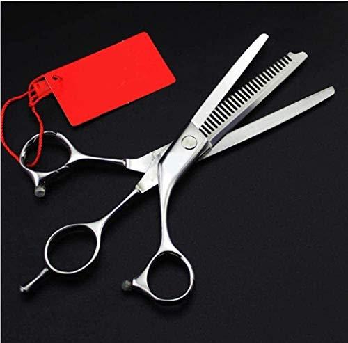 AMYD Ciseaux 6.0 Ciseaux à Cheveux Ciseaux de Coiffeur Coiffeur Professionnel S Ciseaux Dents Plates Ciseaux Doubles Flat + Tooth Dual Use