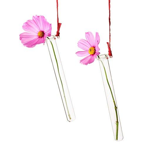 Tuuters 5X Reagenzglashalter für Blumen mit Reagenzglas ☆ Blumenvase ☆ Vase Hochzeit ☆ Hochzeitsdeko