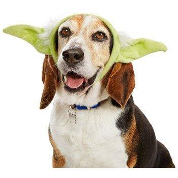 Yoda Pet Pet Costume - Small/Medium