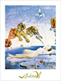 Salvador Dalí Poster/Kunstdruck UNE seconde Avant l'eveil