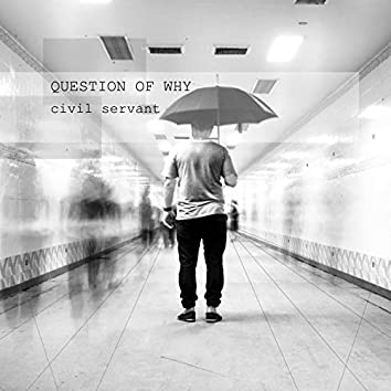 Question of Why (feat. Steelyvibe)