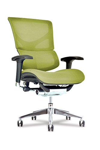 Healthy Back X3 Executive Desk Chair