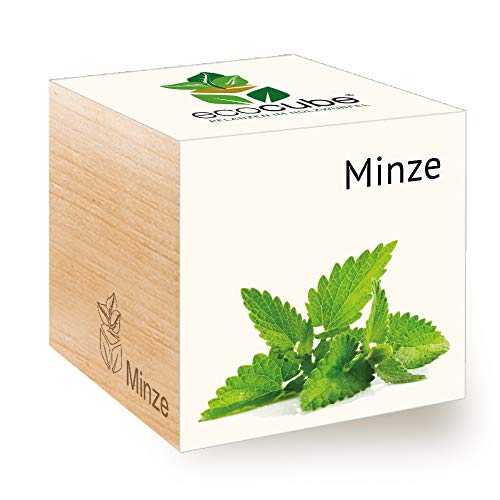 Feel Green Ecocube Minze, Idea Regalo sostenibile (100% Eco Friendly), Grow Your Own/Set di Coltivazione, Piante nel Dado in Legno, Made in Austria