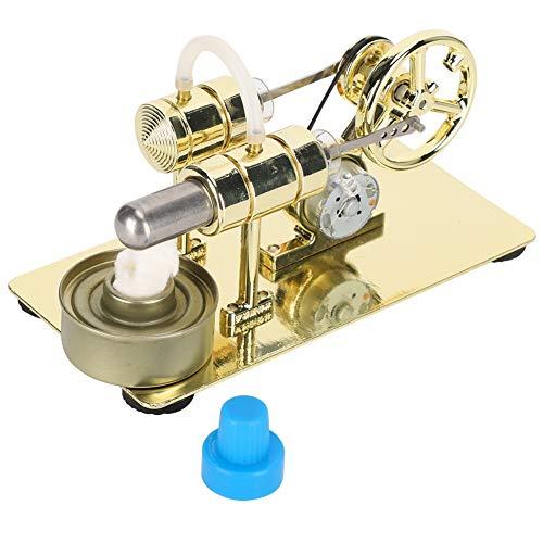 Modello di Motore Stirling, Motore a combustione Esterna Modello di Motore Stirling Giocattoli per l'educazione scientifica della Fisica