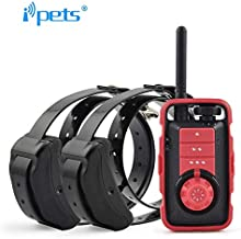 iPets Petrainer Pet610 Original, 800 Metros para 1, 2 o 3 Perros a la Vez 100% Sumergible - 3 Modos - Funcionamiento Sencillo. Diseño ergonómico y pequeño. botón Booster (con 2 Collares receptores)