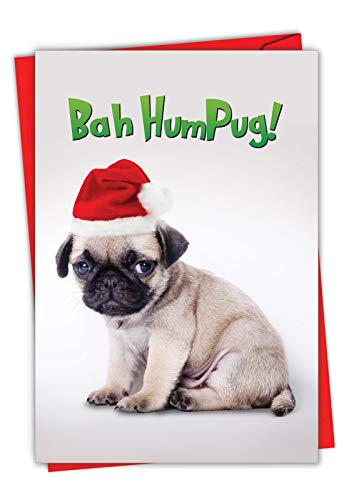 Bah HumPug - Cute Happy Holidays Card with Envelope (4.63 x 6.75 Inch) - Adorable Pet Pug Puppy in Santa Hat, Dog Xmas Greeting - Christmas Stationery for Kids C7065XSG