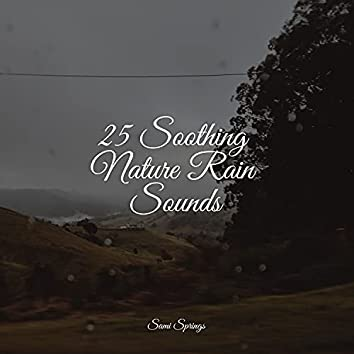 25 Soothing Nature Rain Sounds