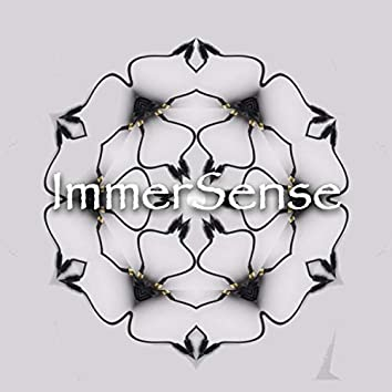 ImmerSense