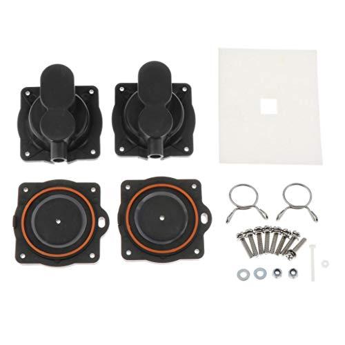 LOVIVER Kit Completo de reparación HP 80 HP 60 para Hiblow, con 8 Tornillos y 2 filtros de Aire