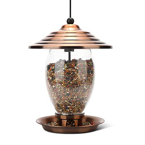 Realead Bird Feeder, Wild Bird Feeder for Outside,Metal and Glass Bird Feeder 3 lbs Seed Capacity, Outdoor Hanging for Garden Yard,Easy to Clean
