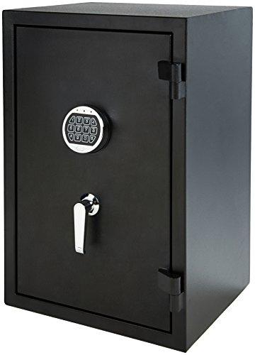 Amazon Basics Fire Resistant Box Safe, 2.1 Cubic...