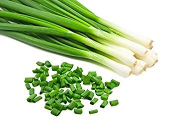 SANHOC Samen-Paket: Schnittlauch Seeds - tuberosum -Seed
