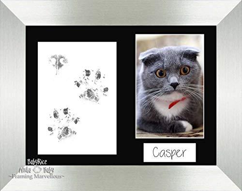 Anika-Baby Cat Animal Patte pattes kit Argent brossé Cadre photo Ensemble de chaton Cadeau mémoire empreintes personnaliser vous-même