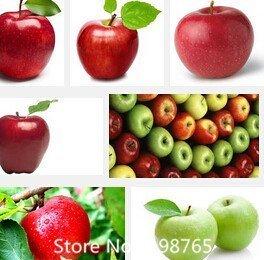 Promotion 30 Stück Bonsai Apfelbaum-Samen seltene Fruchtsamen Bonsai tree-- Amerika Red Delicious Apple Samen Garten für Blumentopf