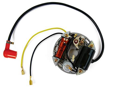 Lichtmaschine 6V 17W Zündung Ersatzteil für/kompatibel mit Bosch Puch, Kreidler, Sachs, Zundapp, KTM +Stecker
