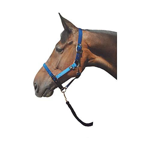 H&Y Hy Metallic Look Halfter (Pony) (Dunkelblau/Hellblau)