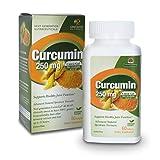 Genceutic Naturals Curcumin Organic Raw Dietary Supplement Vegetarian Vegan Gluten Free Non GMO Ideal for healthy Immune Brain Cellular Liver Cardiovascular Function - 250mg (60 Capsules)