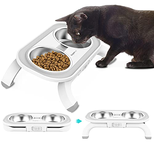 BurgeonNest Kitten Elevated Food Water Bowl Set, 15°Tilted Raised Cat Dishes with Stand for Indoor Cats Puppy, Stainless Steel Pet Bowls No Spill Feeding Station