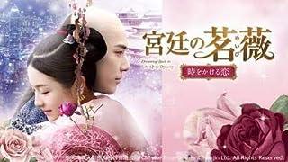 中国ドラマ□ 宮廷の茗薇<めいび> ~時をかける恋 □ DVD・全話