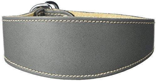 BBD Pet Products - Collare per Whippet, taglia unica, 3/4 x 30 a 40 cm, grigio
