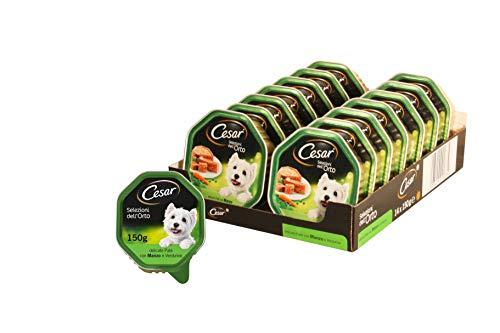 Cesar Selezioni dell'Orto Cibo per Cane, Delicato Paté con Manzo e Verdurine, senza coloranti éd aromi artificiali 150 g - 14 Vaschette