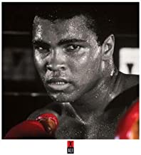 Muhammad Ali - Gloves Celebrity Sports Boxing Icon Poster Print 16x16