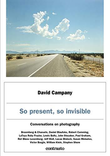 So present, so invisible (English Edition)