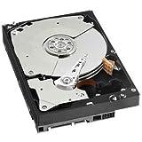 Western Digital 80 GB Caviar Blue SATA 7200 RPM 8 MB Cache Bulk/OEM Desktop Hard Drive WD800AAJS