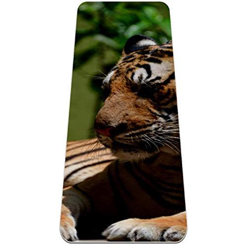 BestIdeas Esterilla de yoga Big Tiger para yoga, pilates, ejercicio de suelo para hombres, mujeres, niñas, niños, principiantes, diseño antideslizante