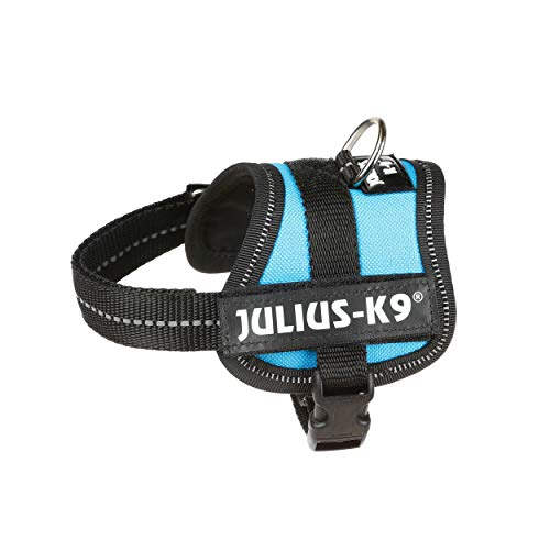 JULIUS-K9, 162AM-BB1, K9-Powergeschirr,...